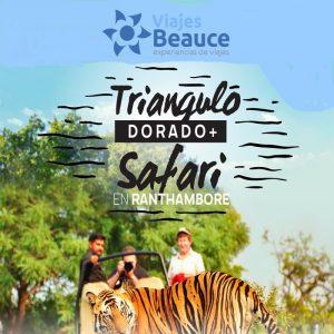 Disfruta del Triangulo dorado + safari en Ranthambore con Viajes BEAUCE.